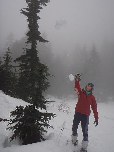 snowball F